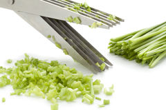 Herb scissors cutting chives Stock Photo