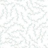 Herb Seamless Pattern Stock Foto's