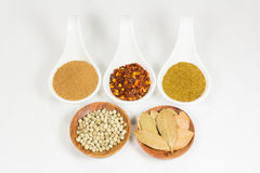 Herb seasonings Stock Image