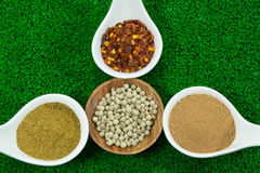 Herb seasonings Royalty Free Stock Photo