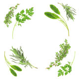 Herb Selection Royalty Free Stock Image