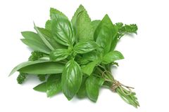 Herb Series Mixed Herbs Stock Image
