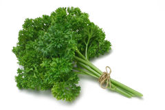 Herb Series Parsley royalty free stock images