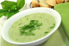 Herb Soup Royalty Free Stock Photo