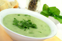 Herb Soup Stock Photos