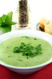 Herb Soup Royalty Free Stock Image