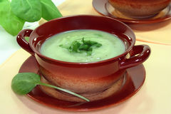 Herb Soup Stock Photo
