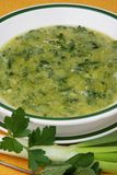 Herb soup. Delicious green herb soup with parsley Royalty Free Stock Photo