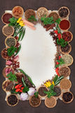 Herb and Spice Abstract Border Royalty Free Stock Photo