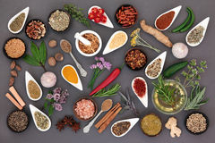 Herb and Spice Abstract Stock Photography