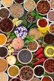 Herb Spice e seleção comestível da flor Fotos de Stock