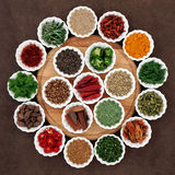 Herb and Spice Platter Royalty Free Stock Photos