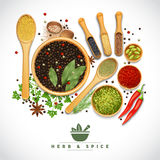 Herb And Spice Poster. Poster of different cooking herbs and spices in wooden dish on white background realistic vector illustration Royalty Free Stock Images