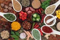 Herb and Spice Sampler Royalty Free Stock Image