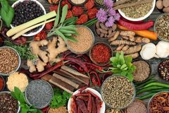 Herb and Spice Seasoning. Herb and spice fresh and dried food seasoning on rustic wood background. Top view stock photos