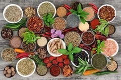 Herb and Spice Seasoning. Large herb and spice food selection dried and fresh on rustic wood background. With chilli pepper varieties including dried ring of stock photos
