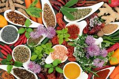 Herb and Spice Seasoning Selection royalty free stock photography