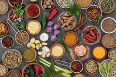 Herb and Spice Seasoning Selection Royalty Free Stock Images