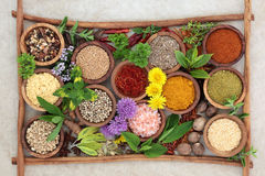 Herb and Spice Seasoning Royalty Free Stock Photos