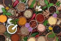 Herb and Spice Seasoning Stock Photography