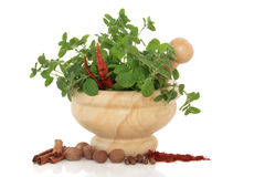 Herb and Spice Selection Stock Photography