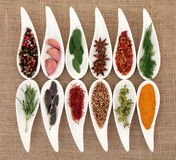 Herb and Spice Selection. In white porcelain dishes over hessian background royalty free stock photos