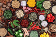 Herb and Spice Selection Stock Image