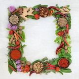 Herb and Spice Wreath. Herb leaf and spice wreath with a selection of fresh herbs and spices with flowers on rustic white wood background with copy space stock photos