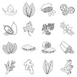 Herb and spices set icons in outline style. Big collection herb and spices vector symbol stock illustration
