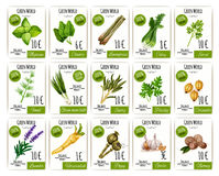 Herb and spices tag or price label set design. Herb and spices tag or labels with price and basil, rosemary, mint, thyme and green onion, garlic and parsley Royalty Free Stock Photography