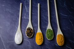 Herb and spices on wooden spoons royalty free stock photos