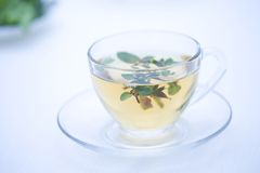 Herb Tea. A glass cup of herb tea on the table royalty free stock images