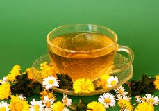 Herb tea. Spring herb tea from coltsfoot and daisy royalty free stock photos