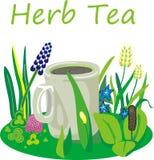 Herb tea Stock Photos