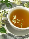 Herb tea with meadowsweet. Cup of herb tea with meadowsweet Stock Image