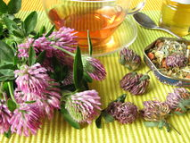 Herb tea with red clover. Cup of herb tea with red clover royalty free stock photos