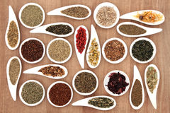 Herb Tea Sampler Stock Foto's