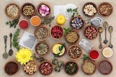 Herb Tea Sampler Stock Photos