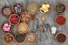 Herb Tea Varieties Photos stock