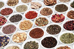 Herb Teas for Good Health Royalty Free Stock Photography