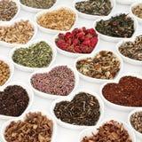 Herb Teas para a boa saúde Fotografia de Stock