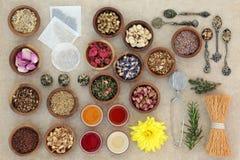 Herb Teas para a boa saúde Foto de Stock