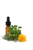 Herb Therapy Royalty Free Stock Photos