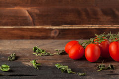 Herb and tomatoes. Wet red cherry tomatoes on wooden table with some basil Royalty Free Stock Photos