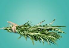 Herb. Variation collection basil bunch lemon balm fennel stock photo