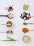Herb variety on rustic white background from top view, oil, coff Royalty Free Stock Photo