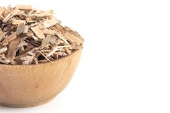 Herb Willow Bark é encontrado na natureza e usado medicinalmente para foto de stock royalty free