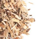 Herb Willow Bark é encontrado na natureza e usado medicinalmente para fotografia de stock royalty free