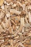 Herb Willow Bark é encontrado na natureza e usado medicinalmente para fotos de stock