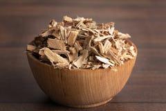 Herb Willow Bark é encontrado na natureza e usado medicinalmente para imagem de stock royalty free